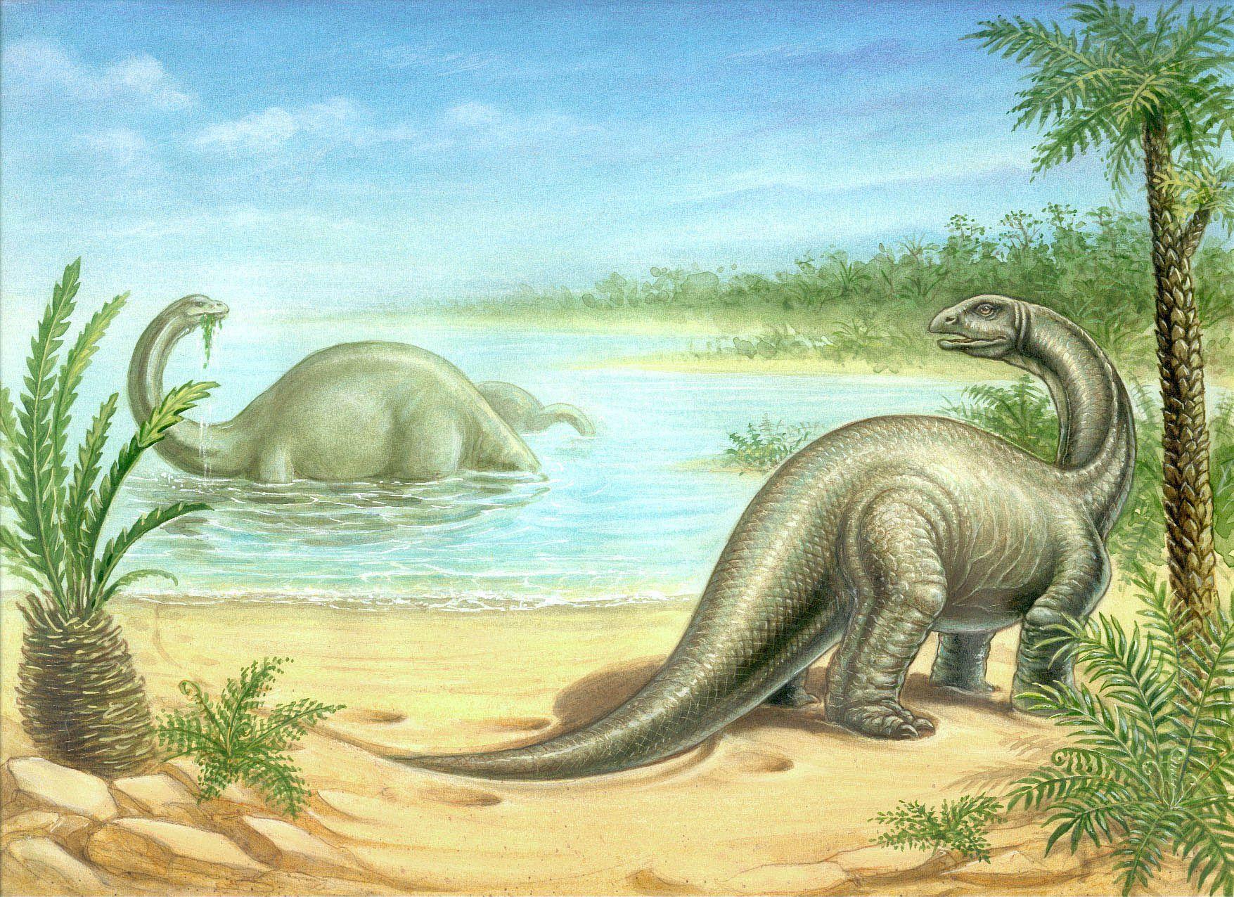 04_06_Brontosaurus