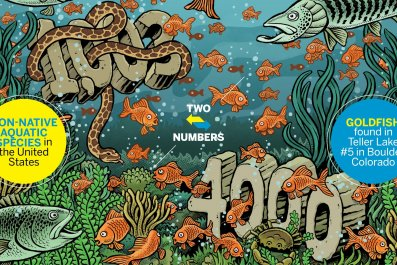 TwoNumbers0421
