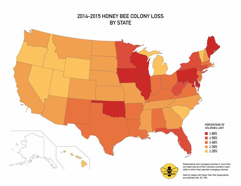 honeybee-loss-US_Map-03