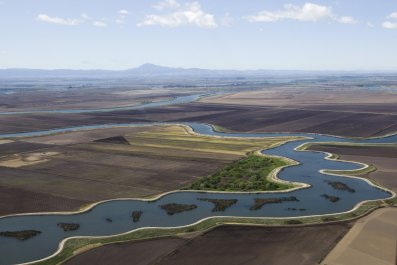 California Accepts Farmers' Offer to Cut Water Use by 25 Percent in Exchange for Protection from Deeper Cuts