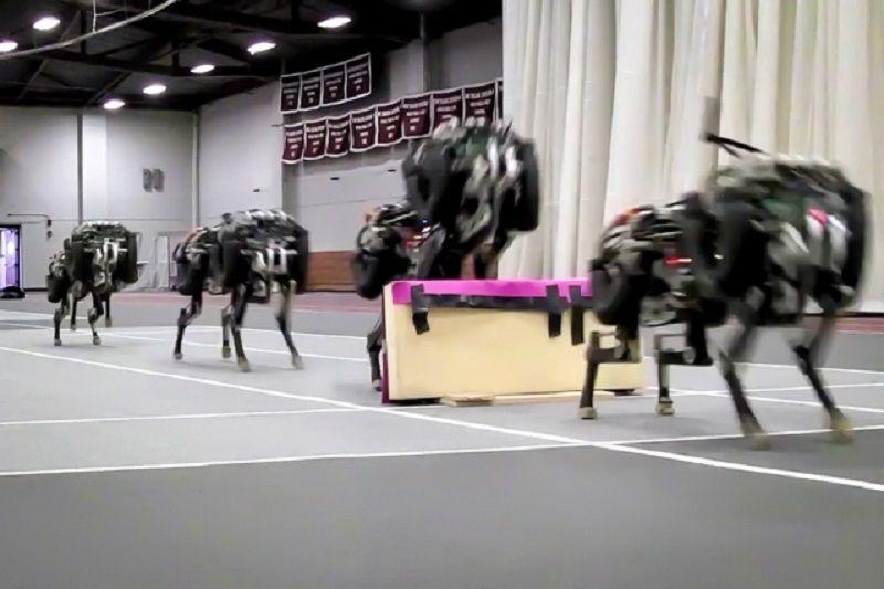 robotic-leaping-cheetah