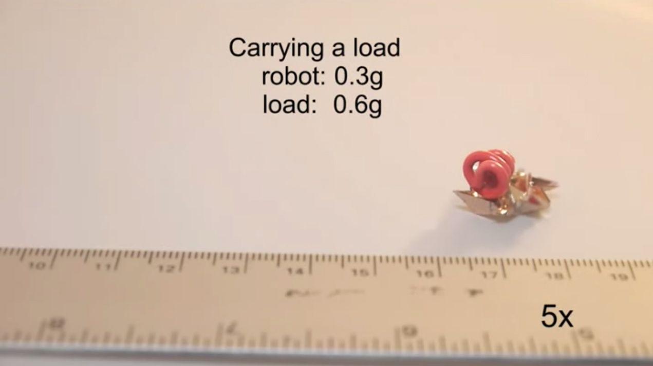 Tiny Transformer Origami Robot Assembles Itself Zips Across Land