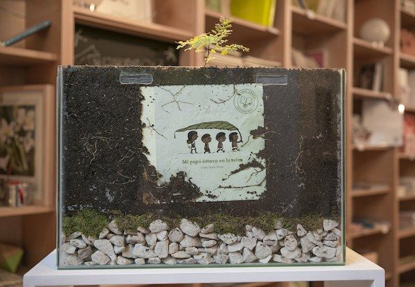 tree-book-tree-germinating-in-book-store