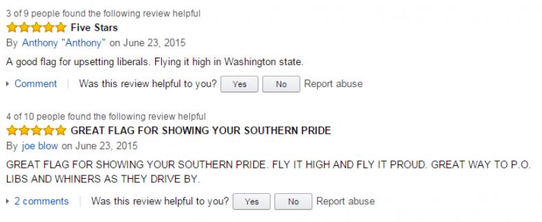 Confederate flag review 1