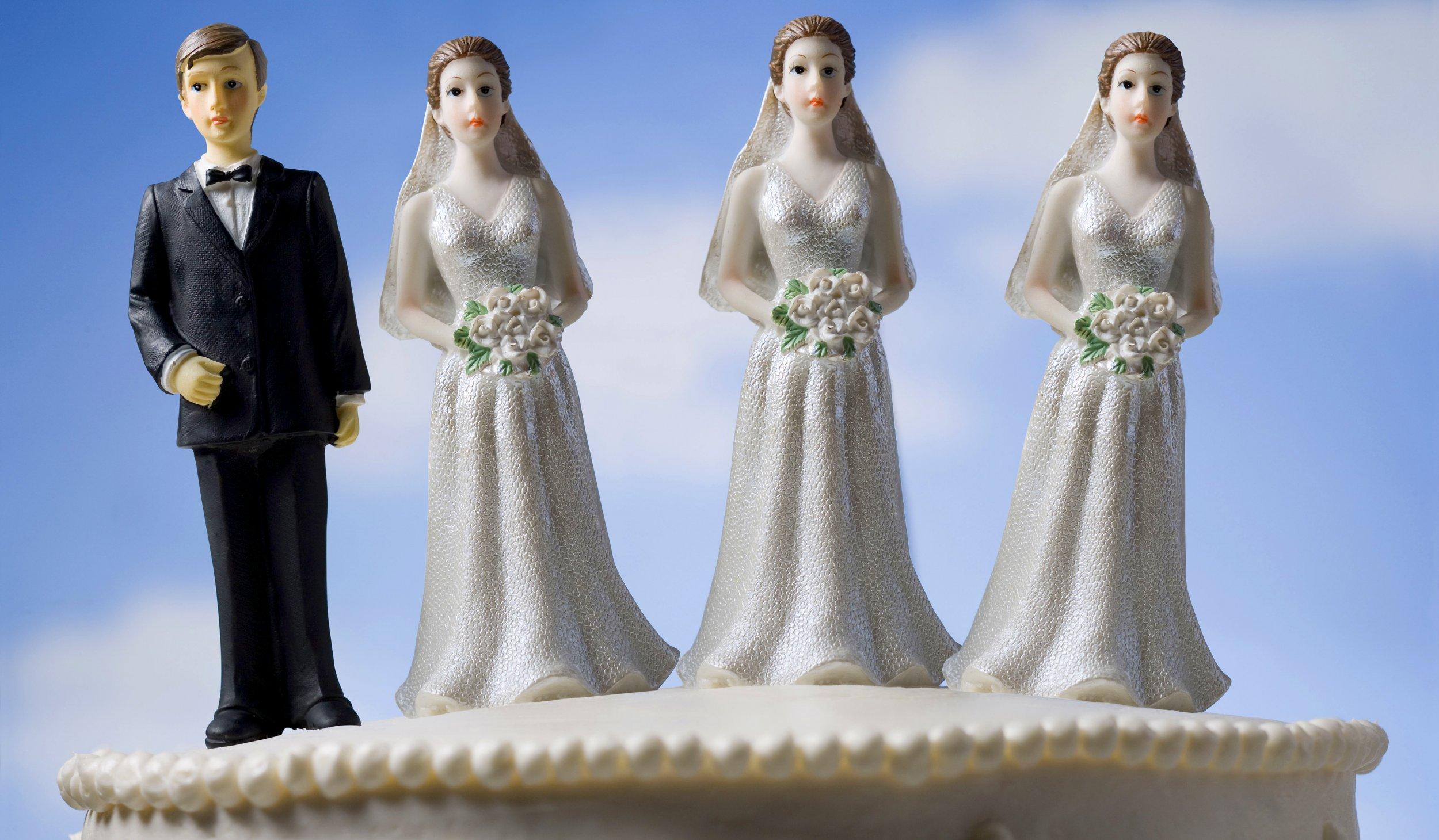 Fair lds polygamy essay