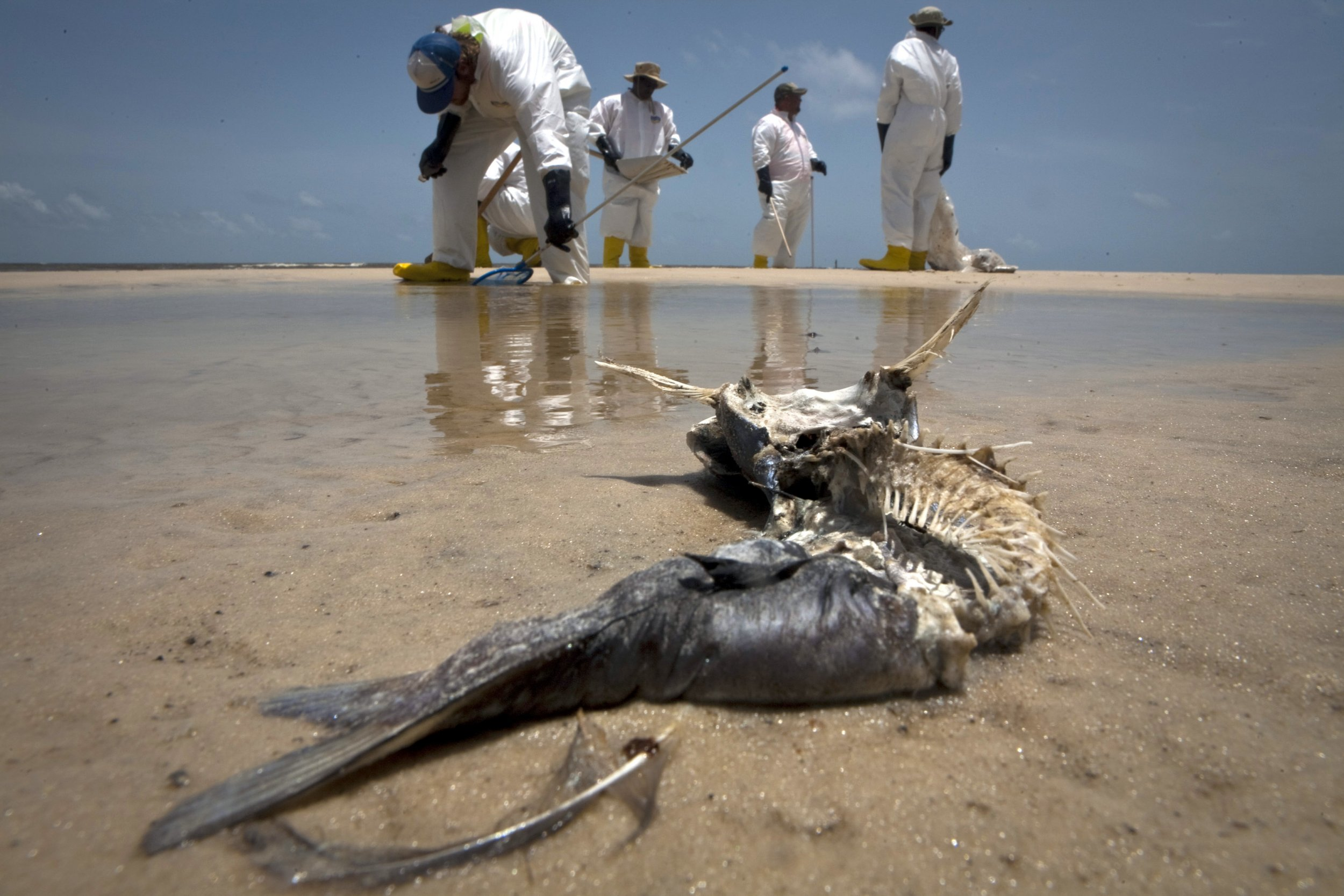 BP Reaches Settlement in 2010 Gulf Oil Spill, Agrees to ...