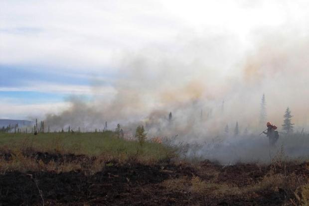 Aggie-Creek-fire