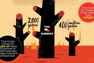 0804_TwoNumbers_Biomass_01
