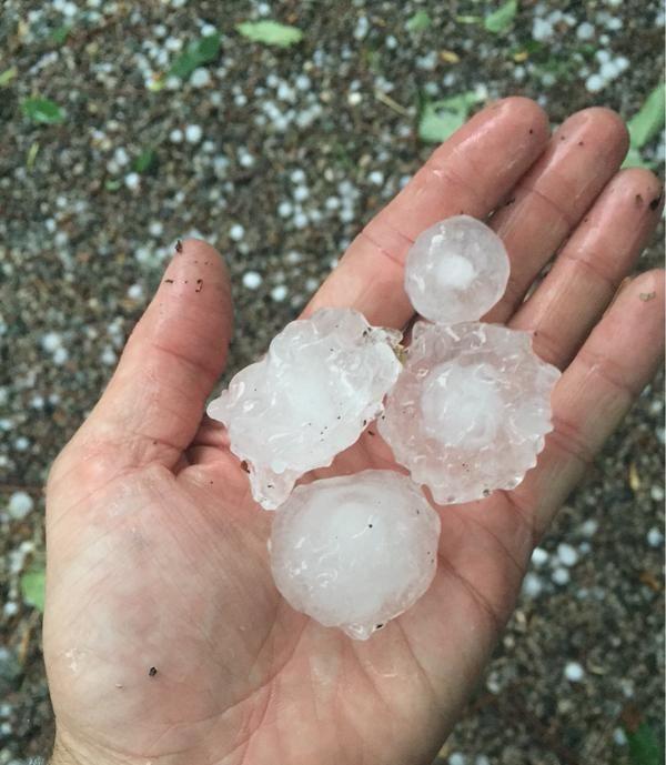 Boston Hail