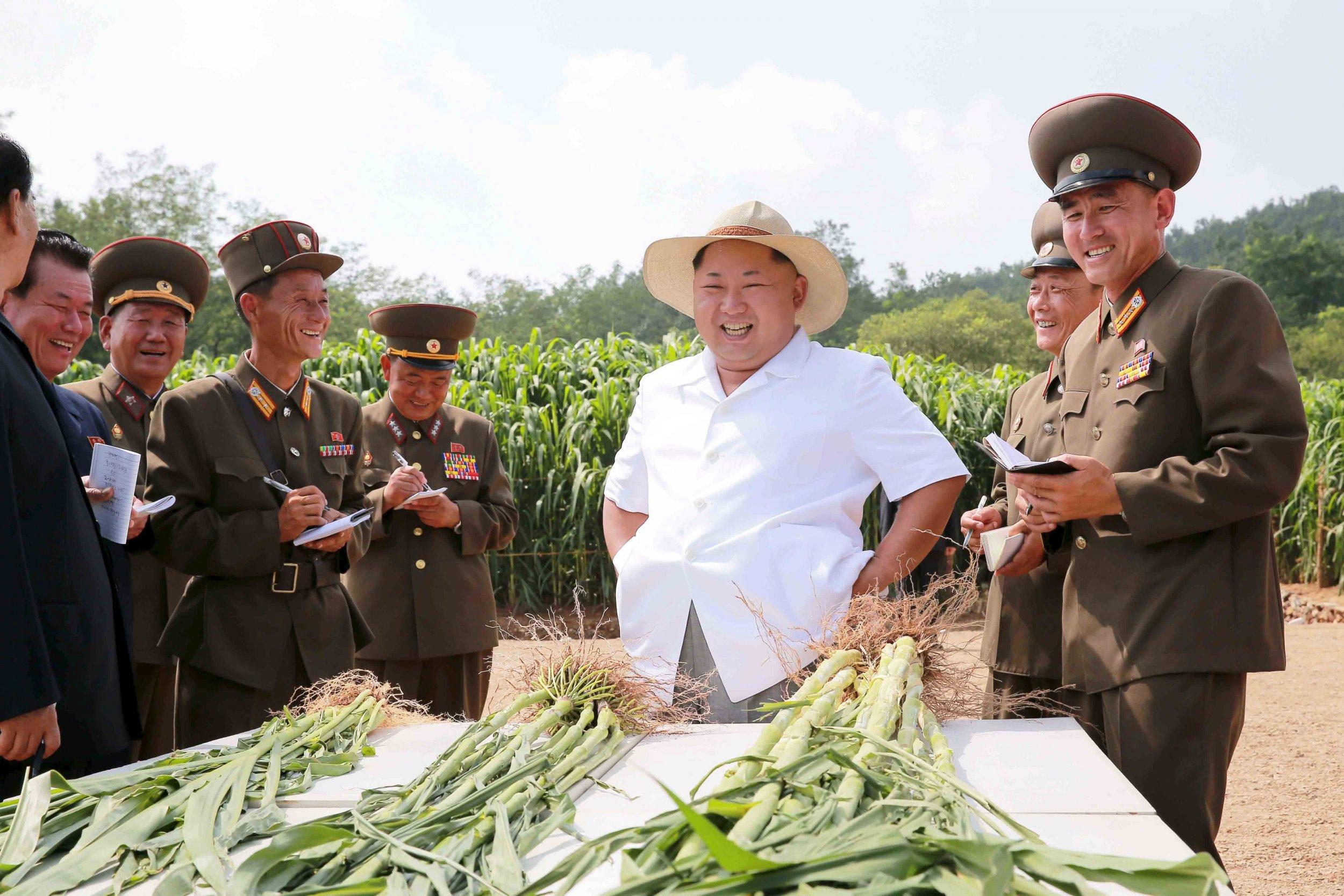 North Korea will pursue defensive nuclear program