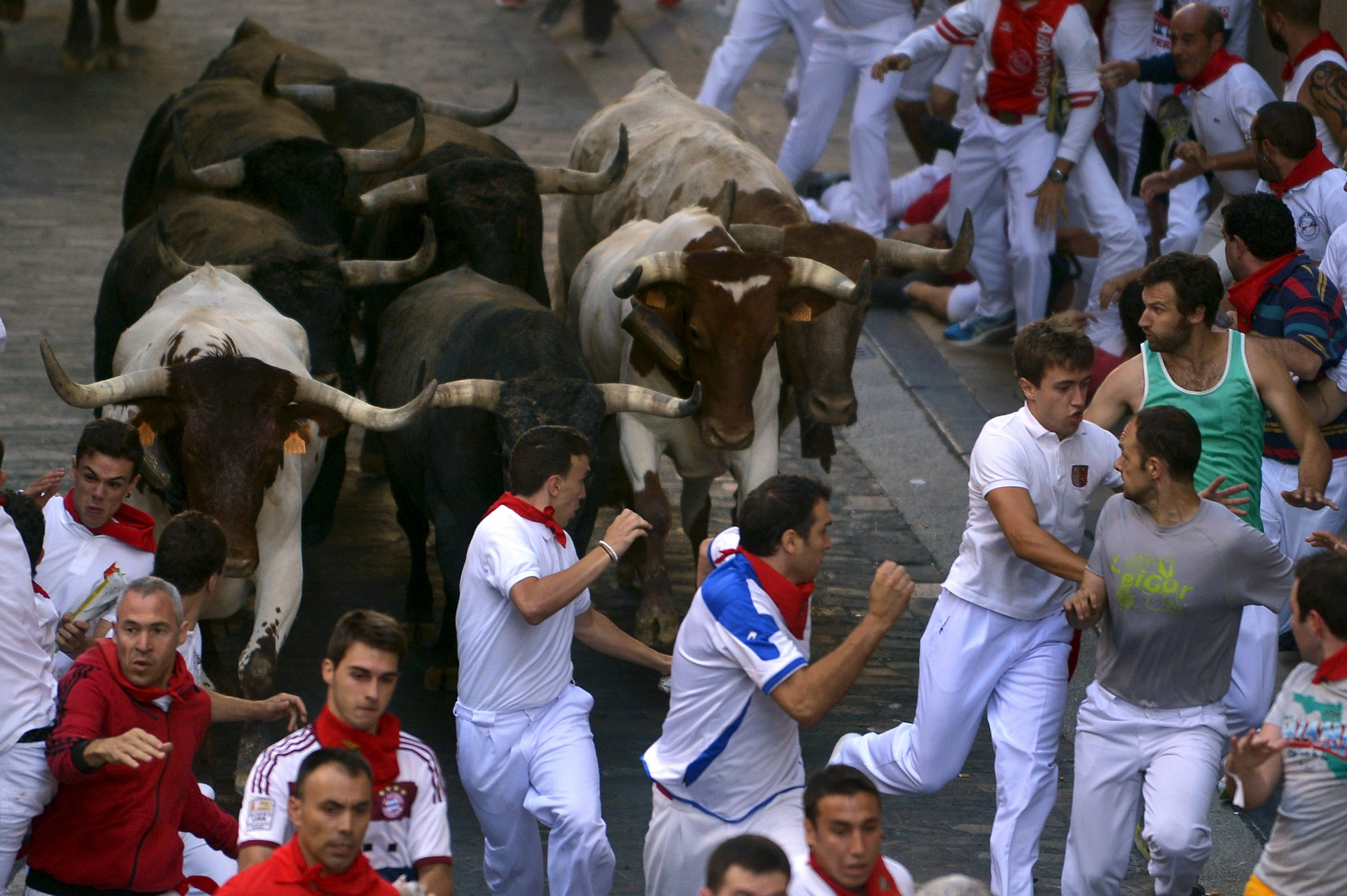 0817_bulls