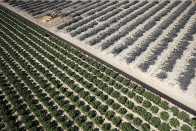 08_20_2015_Climate Change Worsened California Drought