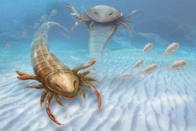 pentecopterus-sea-scorption-artist-impression