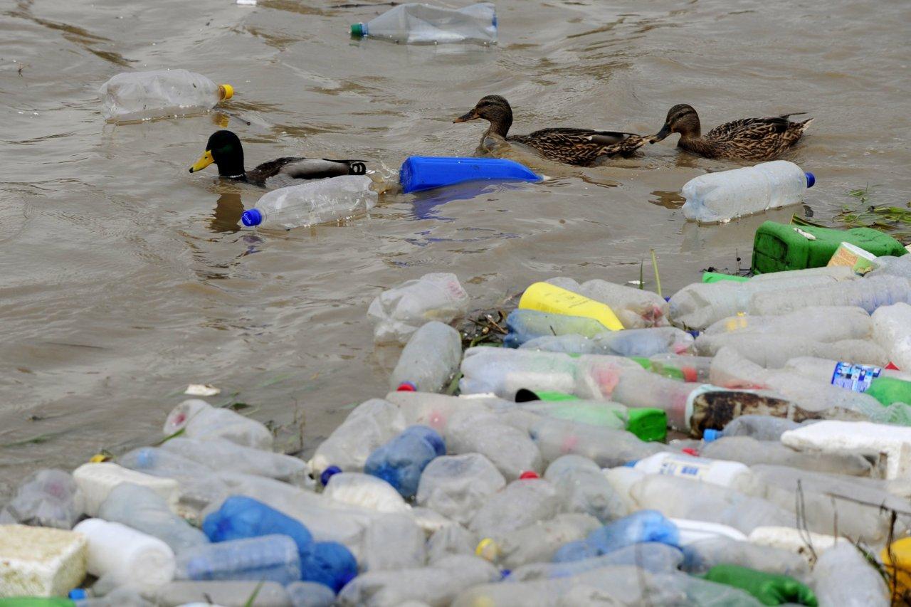 01-Sep-2015_plastic-pollution