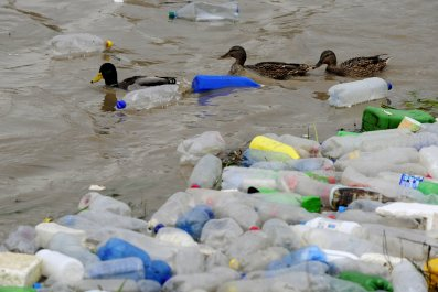 01-Sep-2015_plastic-pollution