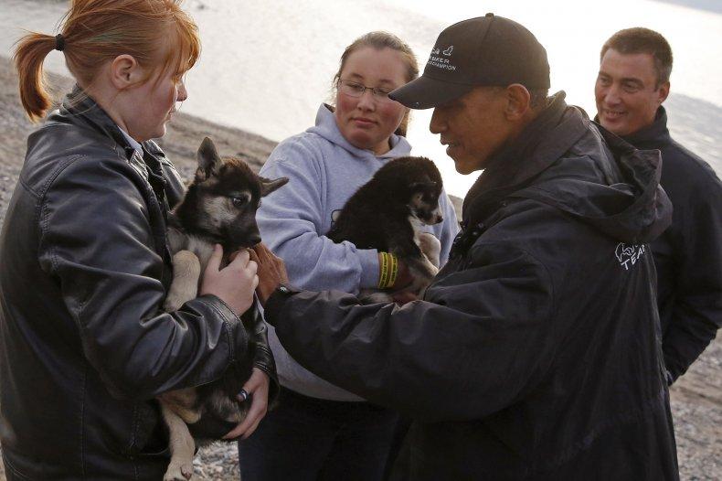 obama puppy