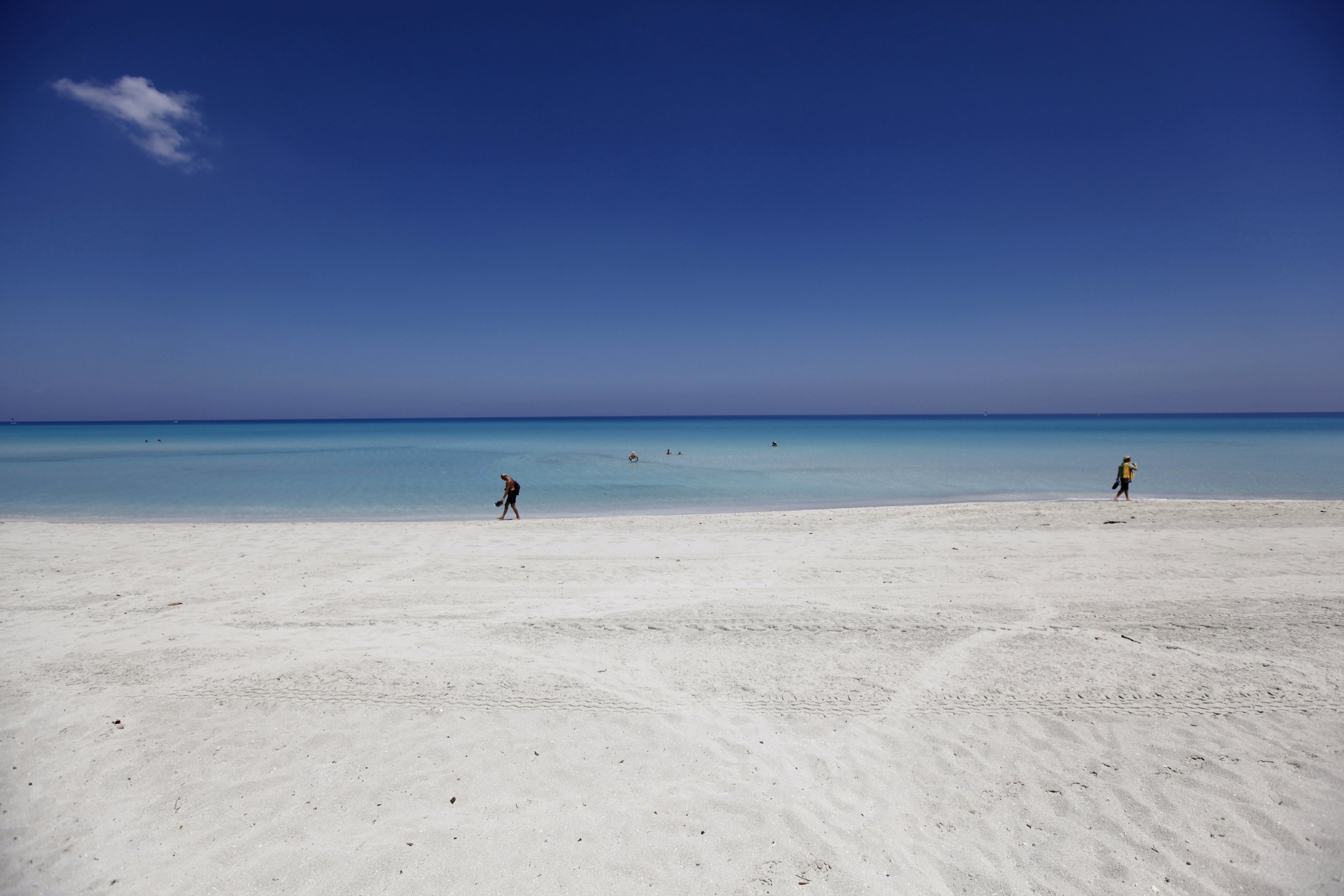 Many White Sand Beaches Are Basically Fish Poop
