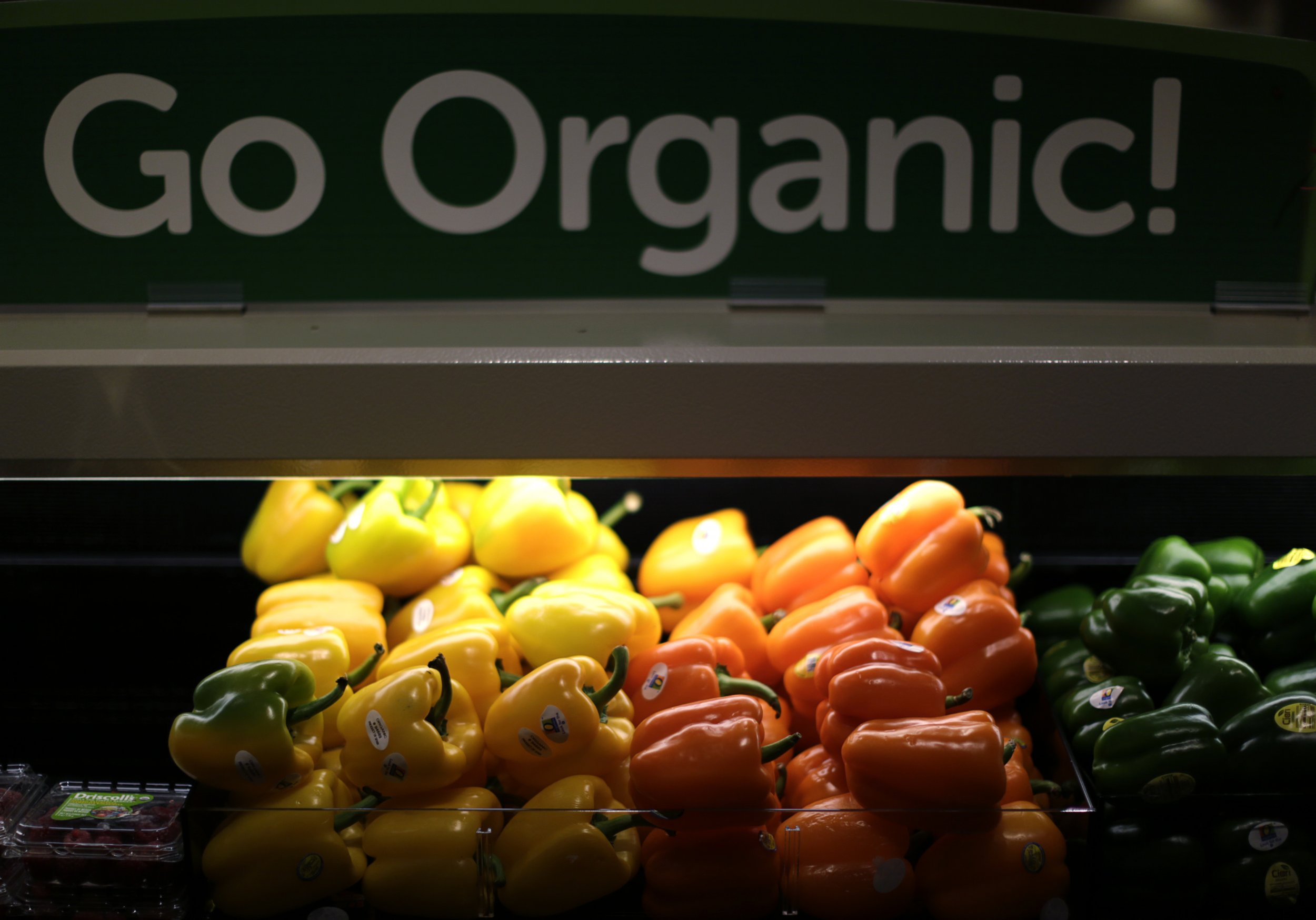 10_02_Organic_01