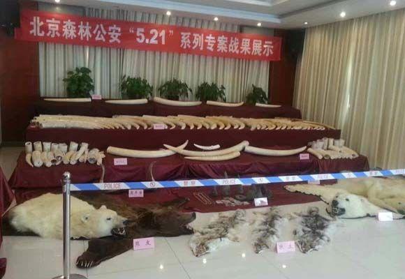 China-smuggling-ring-580