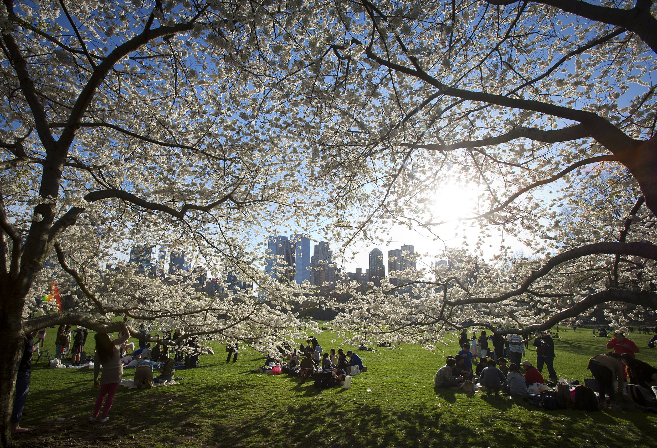 Climate Change to Make Spring Come Early, Science Says