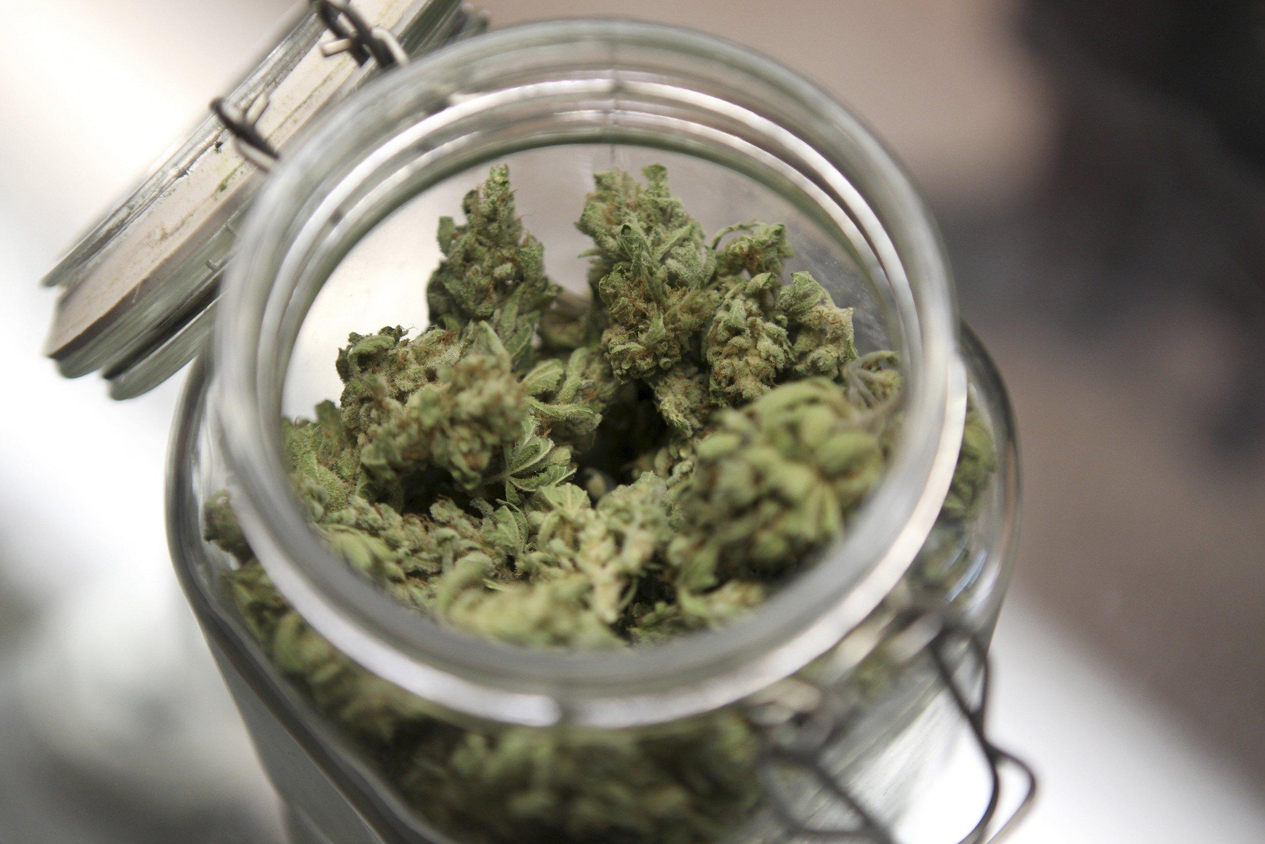 10_29_MedicalMarijuana_01