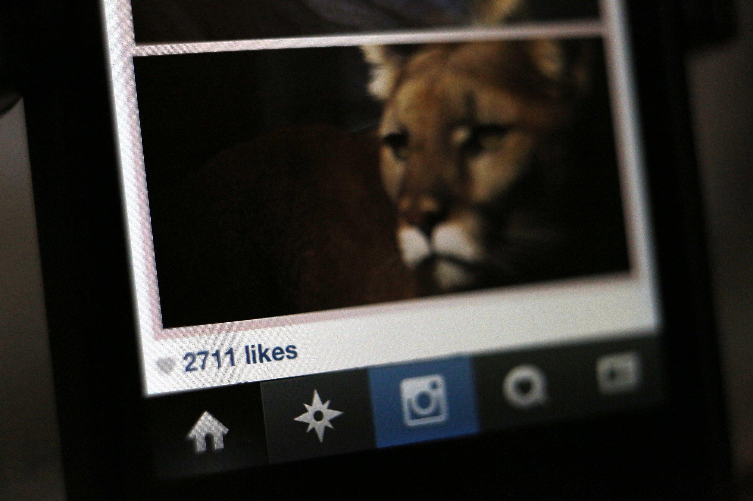 1102_instagram