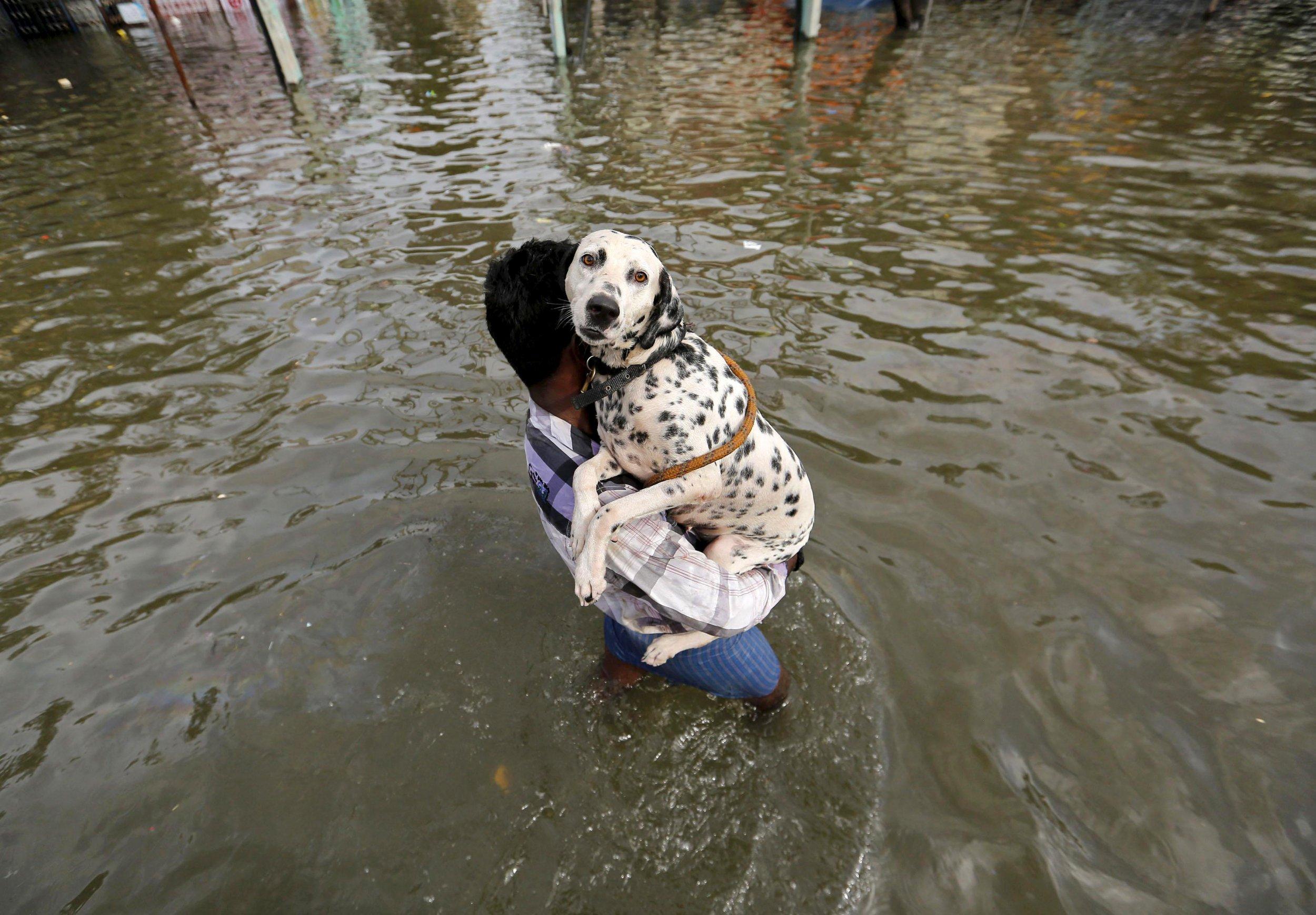 1204_indiafloods