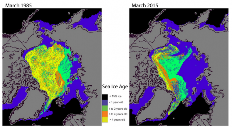 NOAA sea ice extent 1985 and 2015
