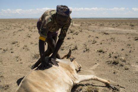 1229_Ethiopia_drought_01