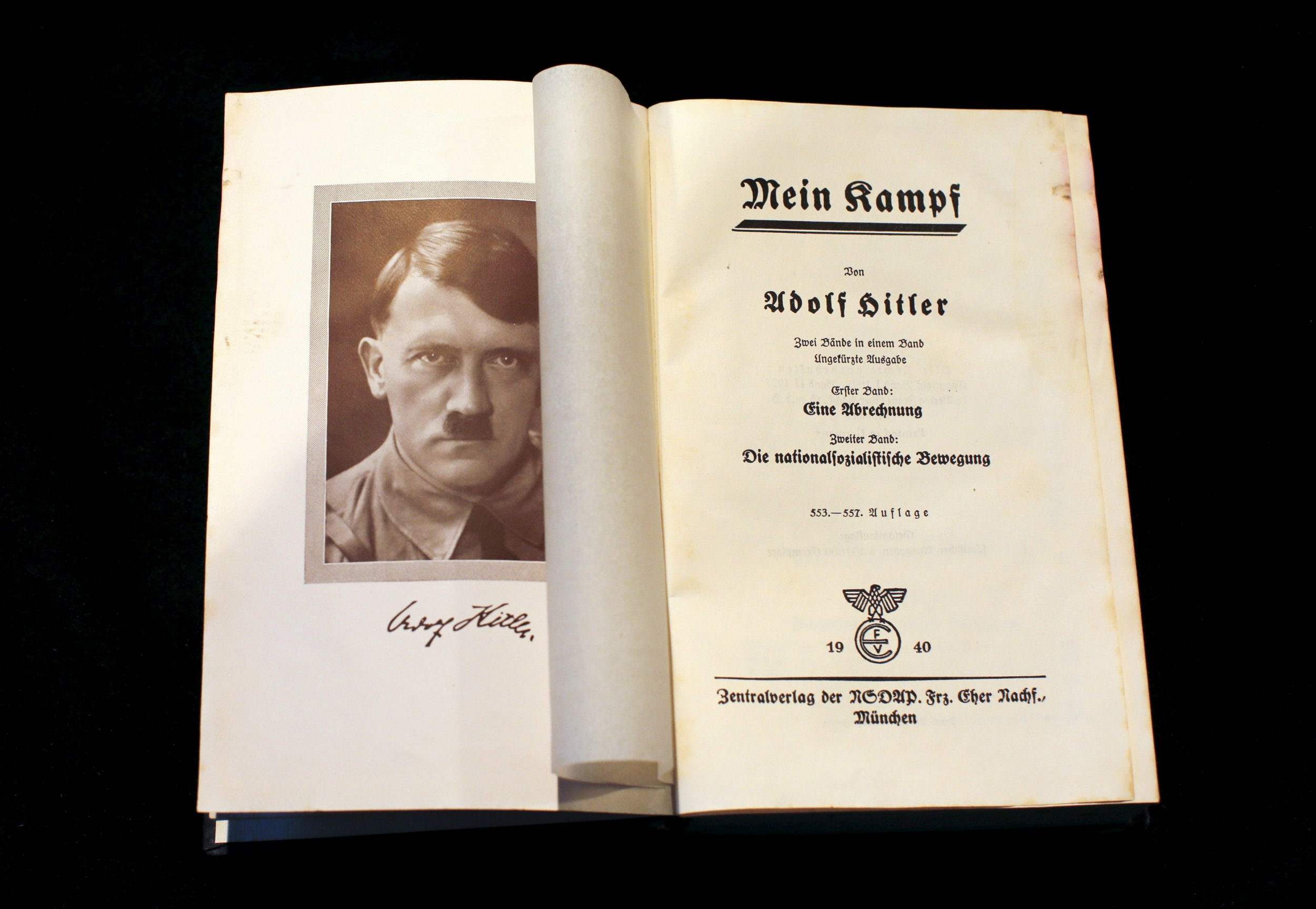 Mein kampf and the formation of