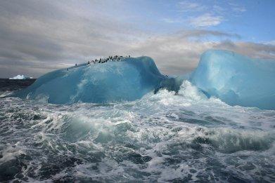 01_15_Antarctica_01