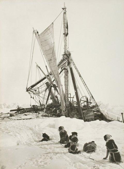 01_15_Antarctica_10
