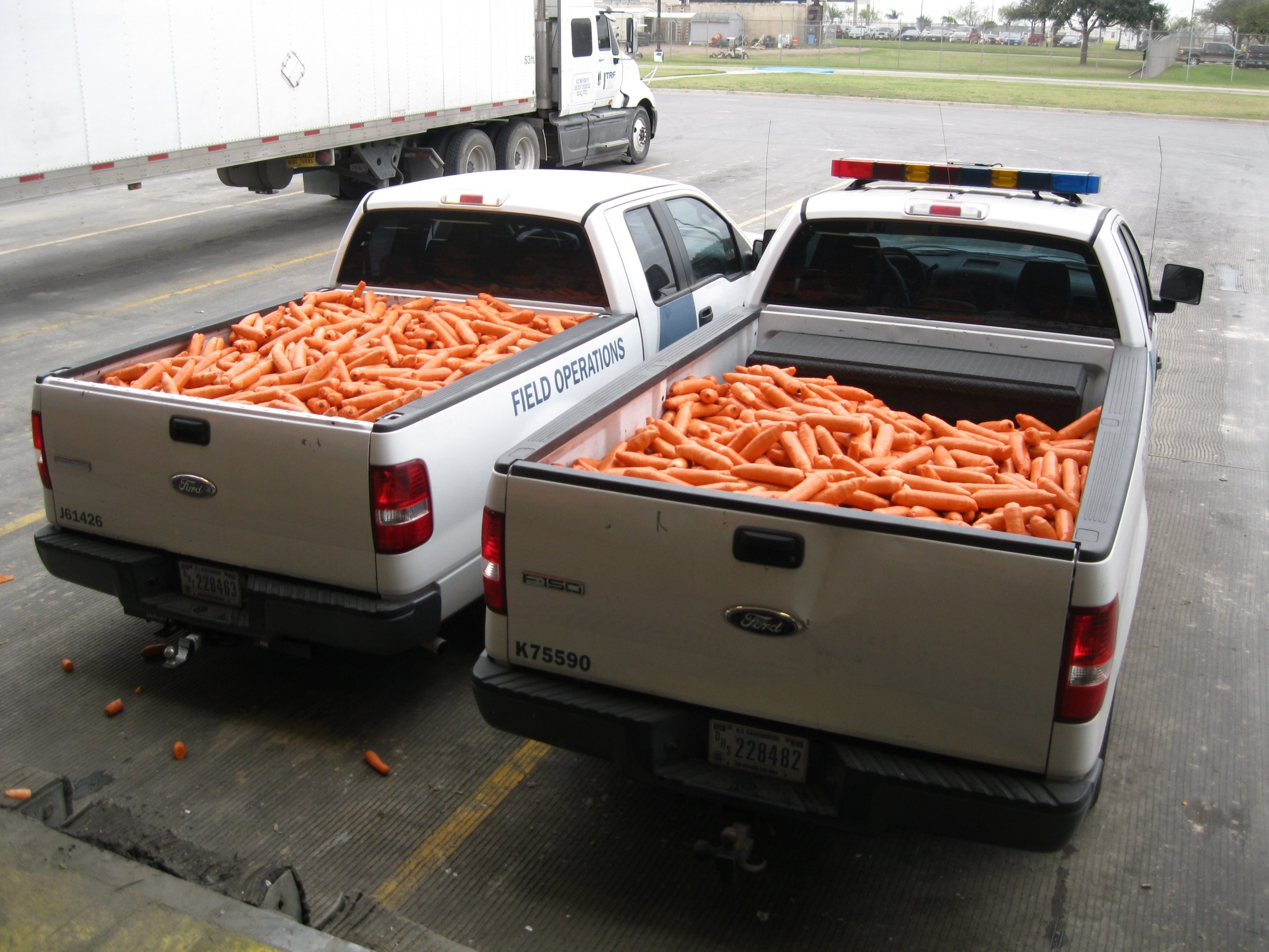 weed carrot mexico shipment cbp_0114