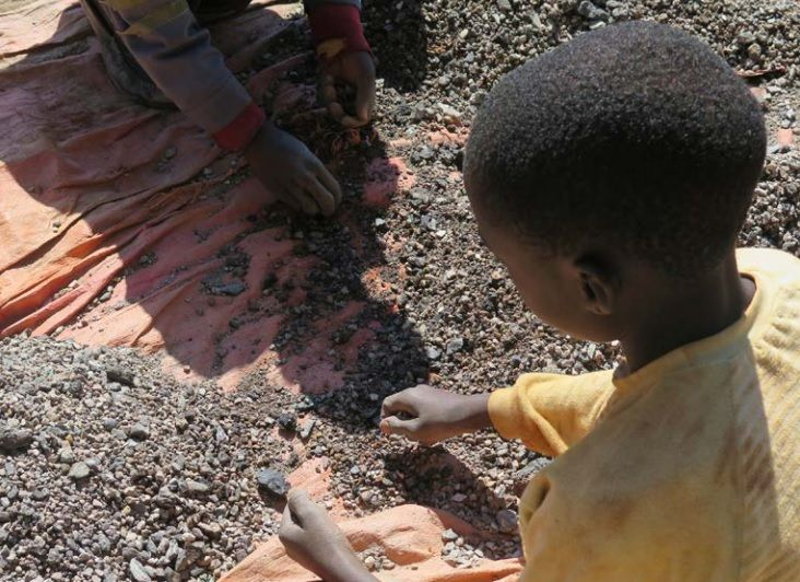 apple child labor amnesty human rights