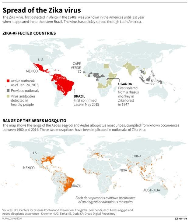 Zika Virus To Spread To All The Americas Who Officials Predict