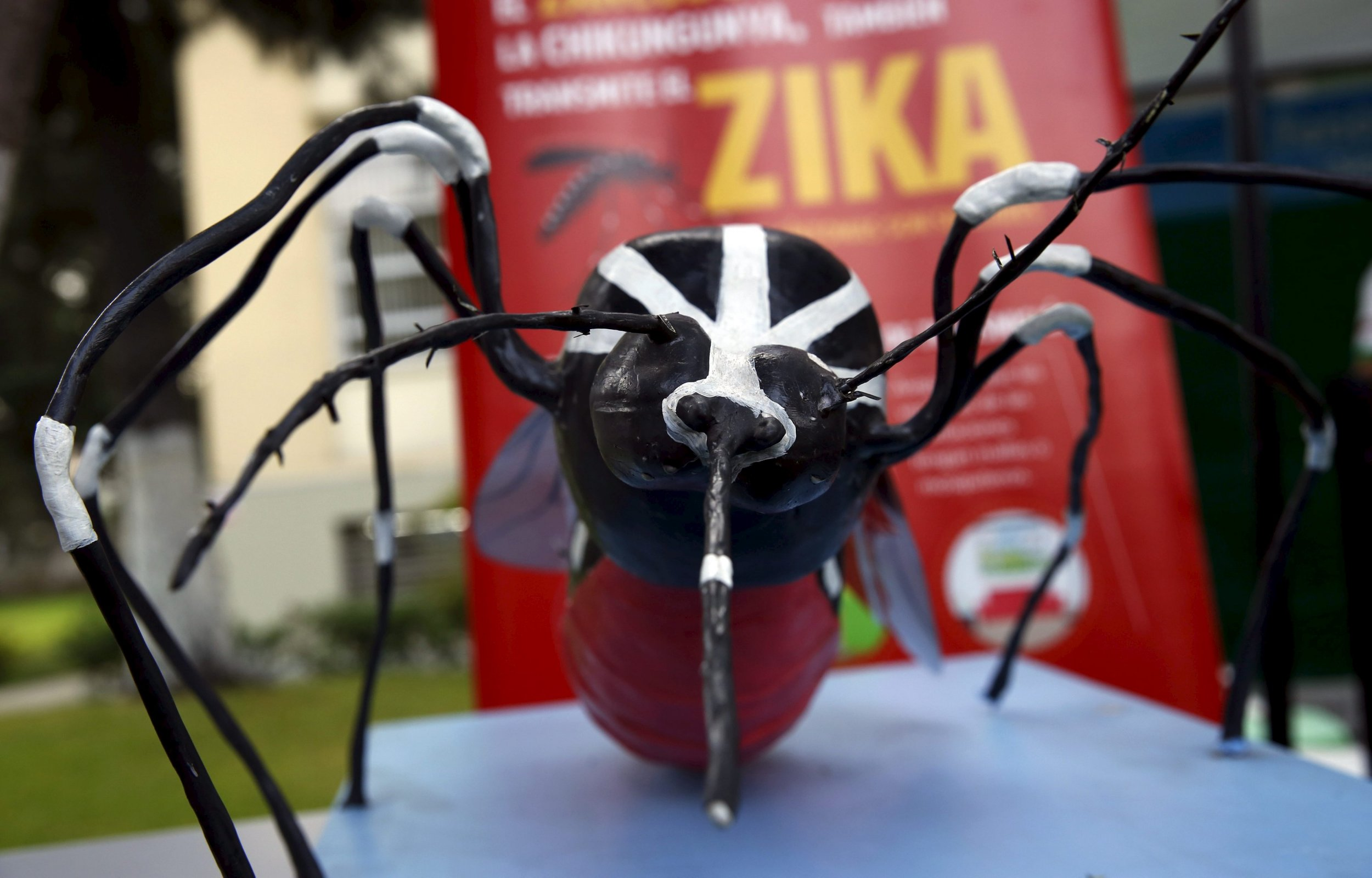 zika us infections cases_0127
