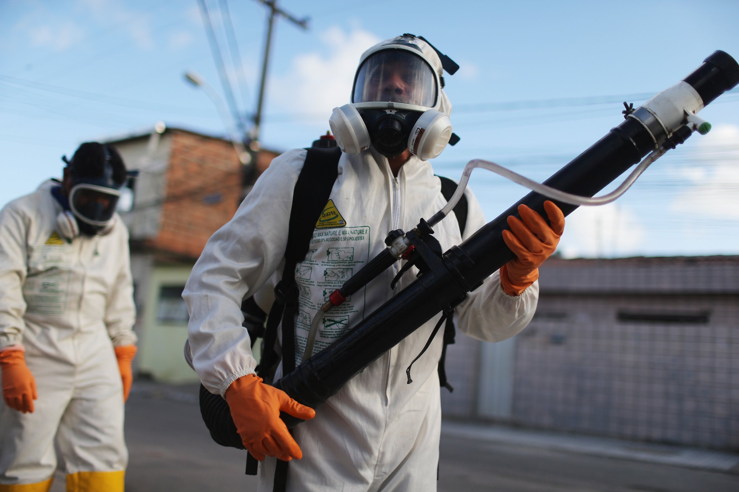The Zika virus could threaten the Rio 2016 Olympics.