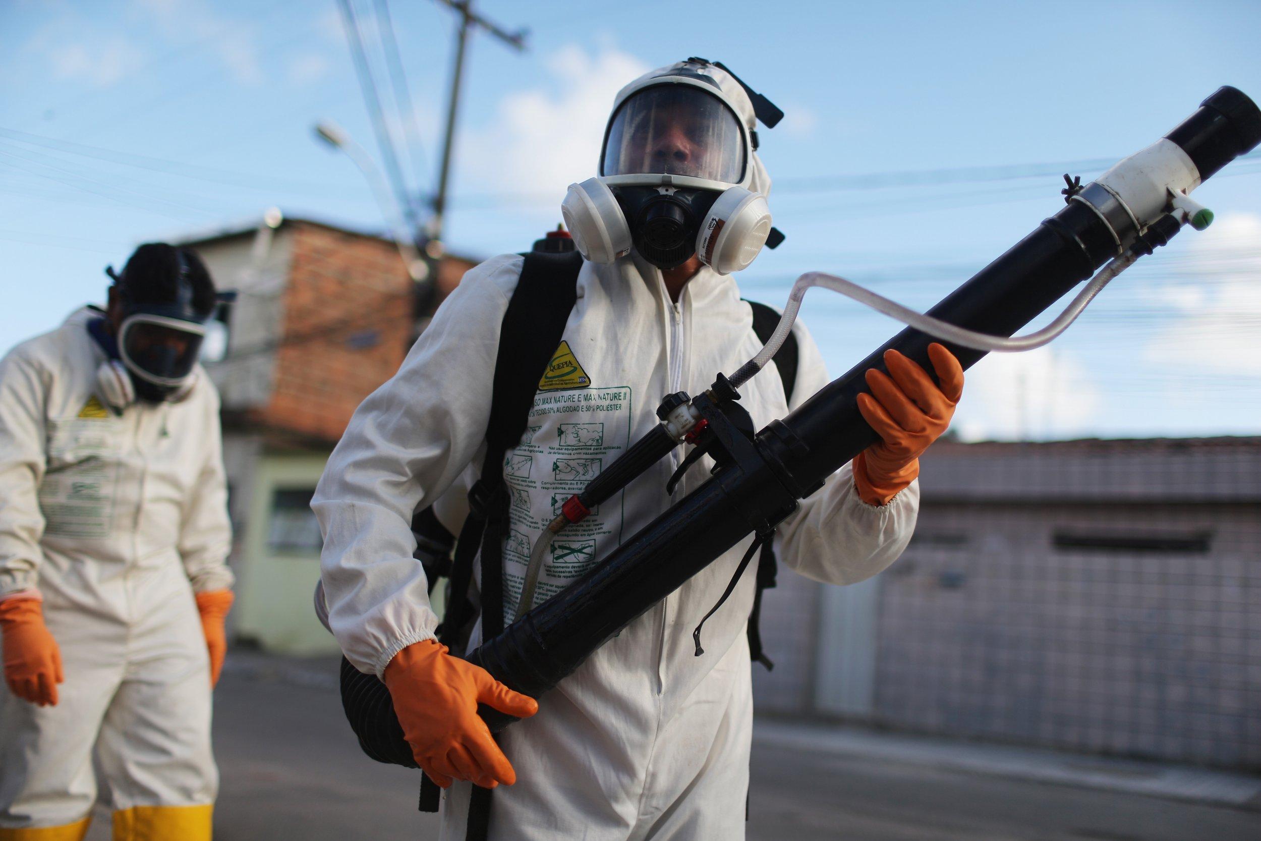 The Zika virus could threaten the Rio 2016 Olympics.