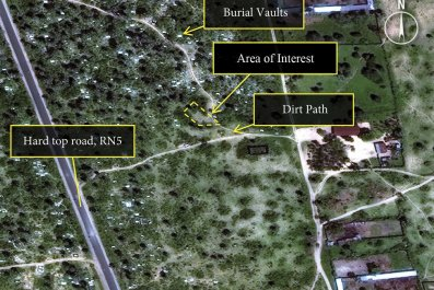A satellite image released by Amnesty International shows a possible mass grave site in Burundi.
