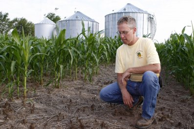 Farmer-dead crops