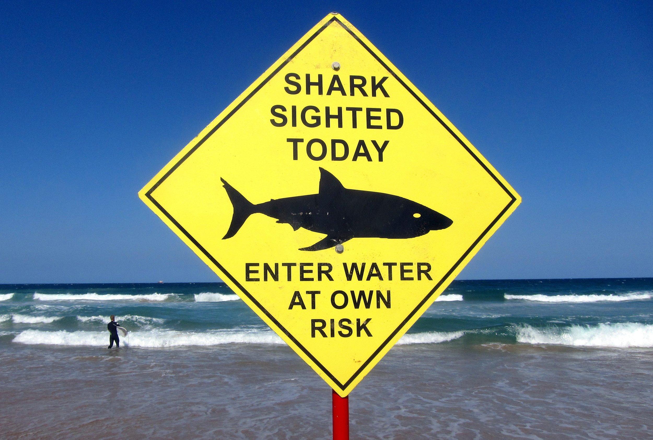 shark-sign