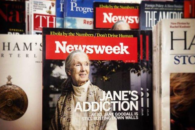 newsweek paywall dropped_0210