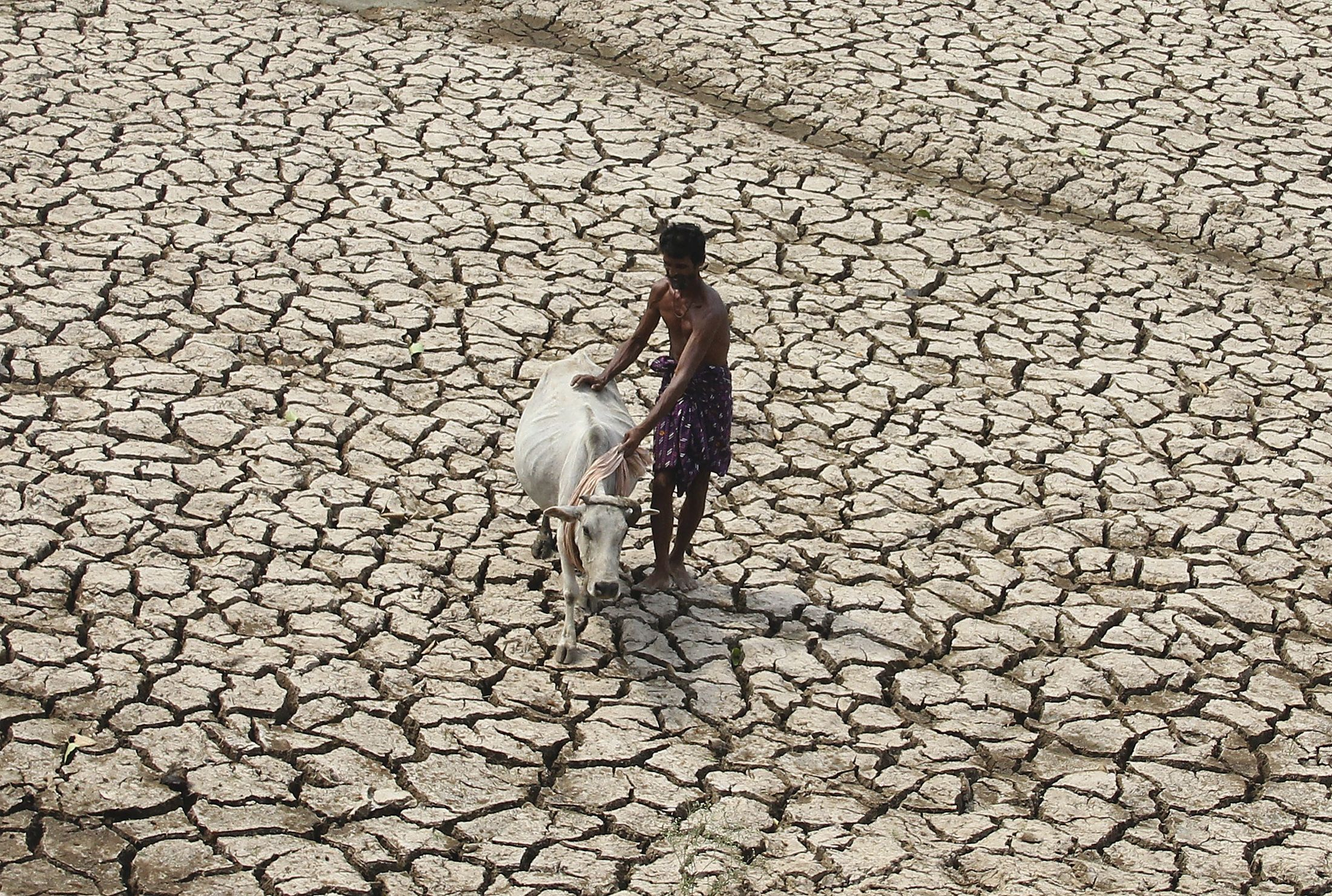 Water scarcity affects 4 billion people