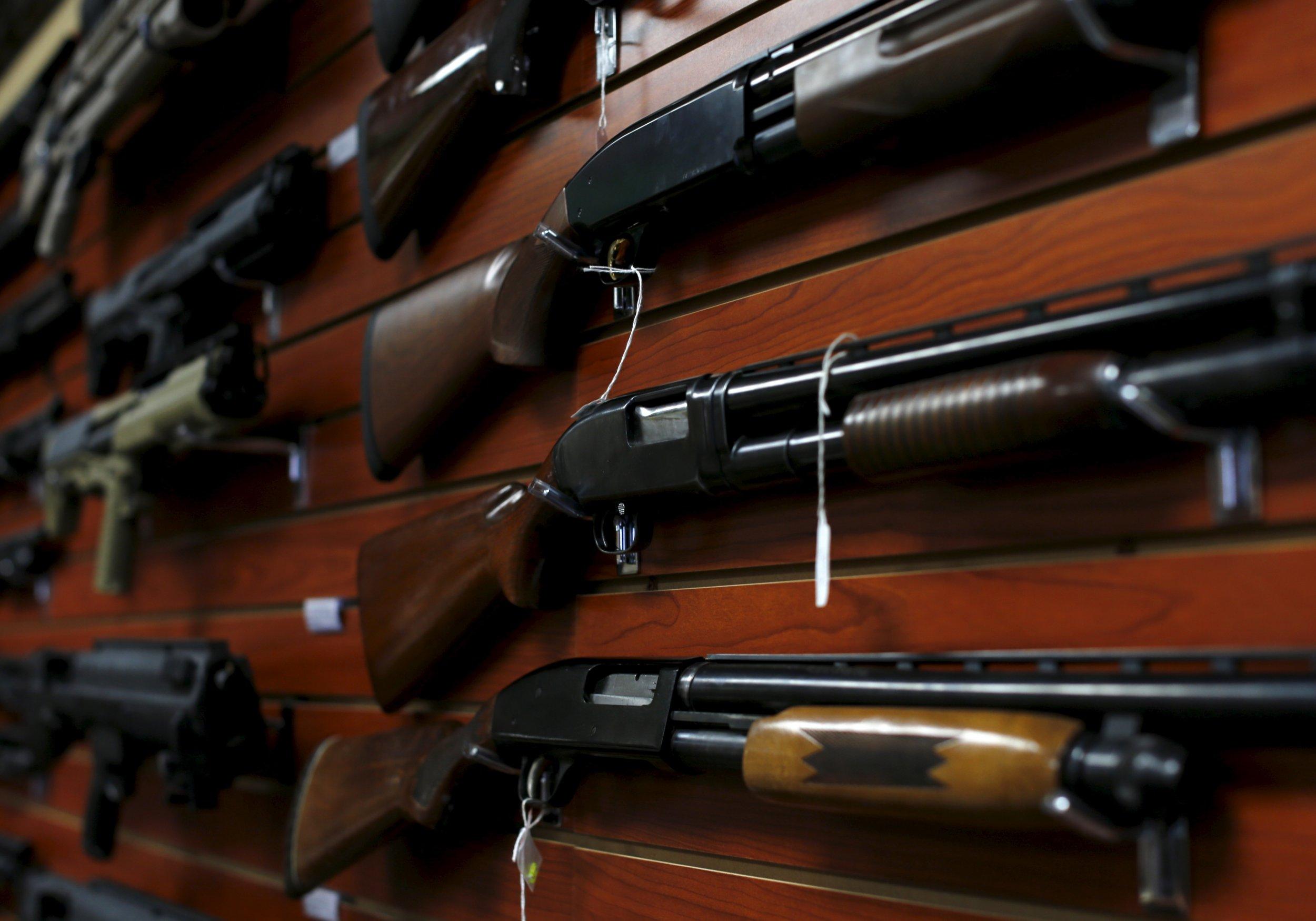 0219_Maine_gun_ballot_initiative_01