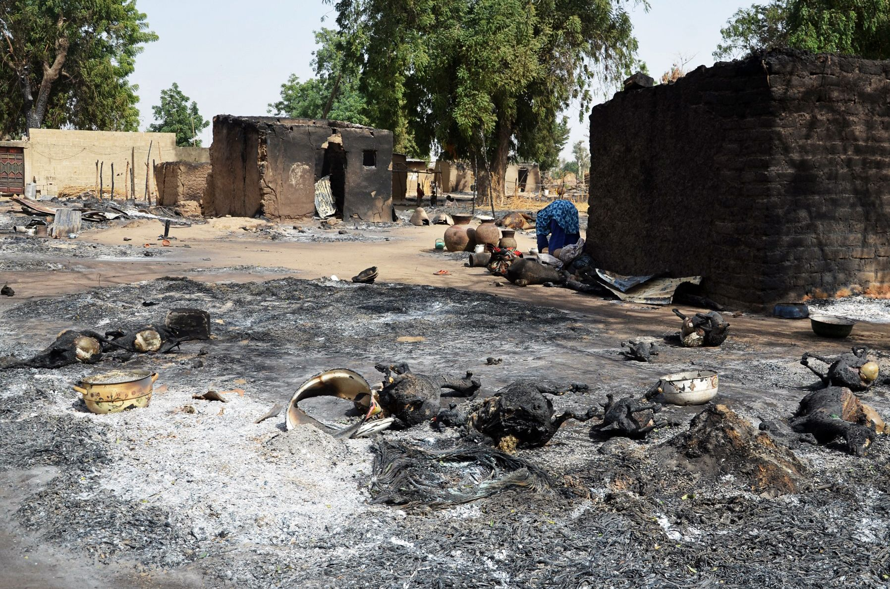 A woman looks through burnt livestock after a Boko Haram attack.