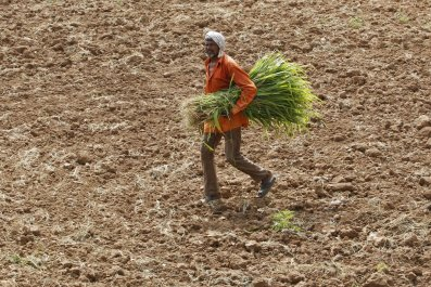 Climate change affects food availability