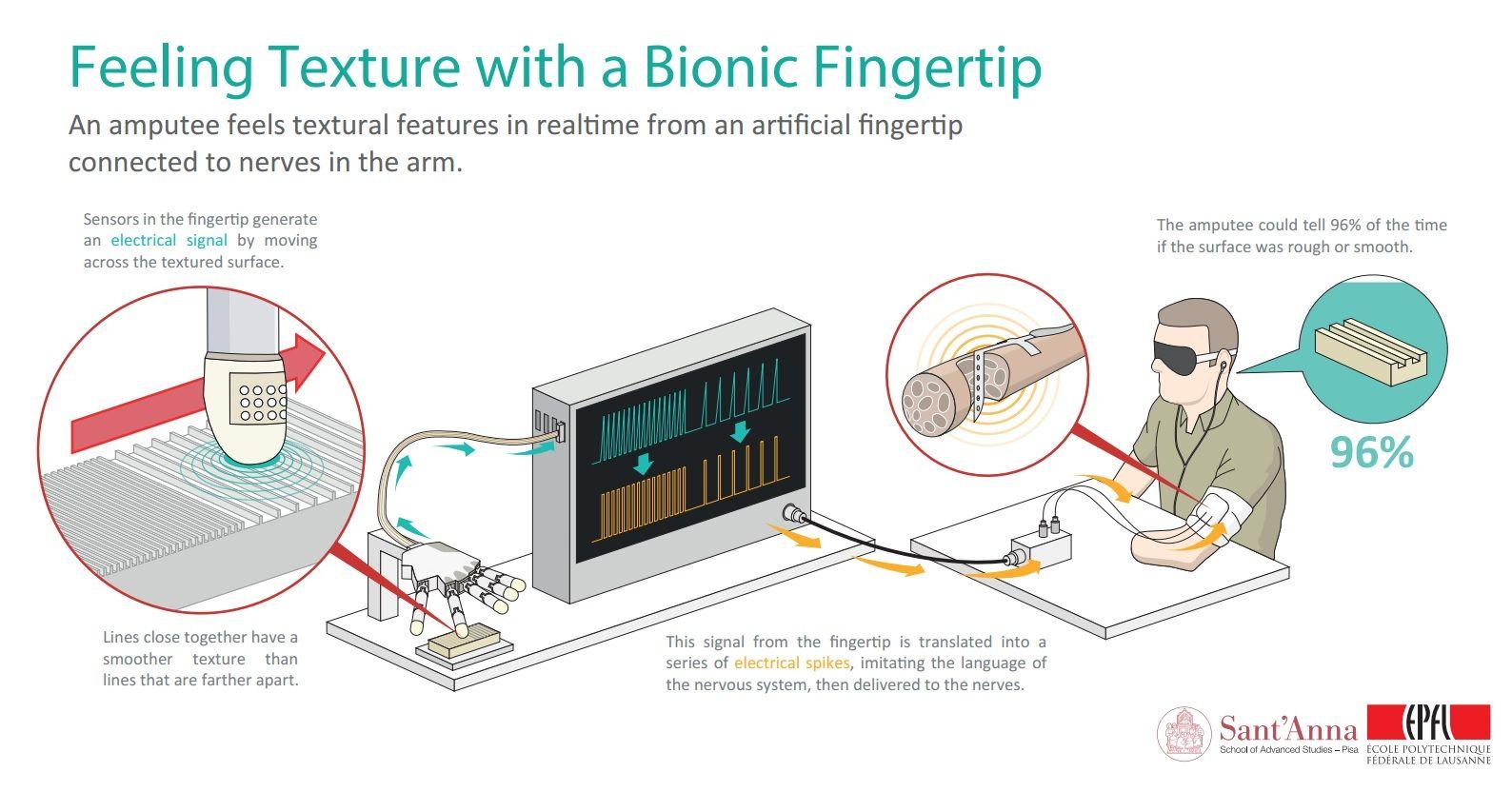 bionic touch prosthetic fingertip epfl