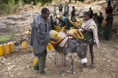 Ethiopian people load a donkey with water.