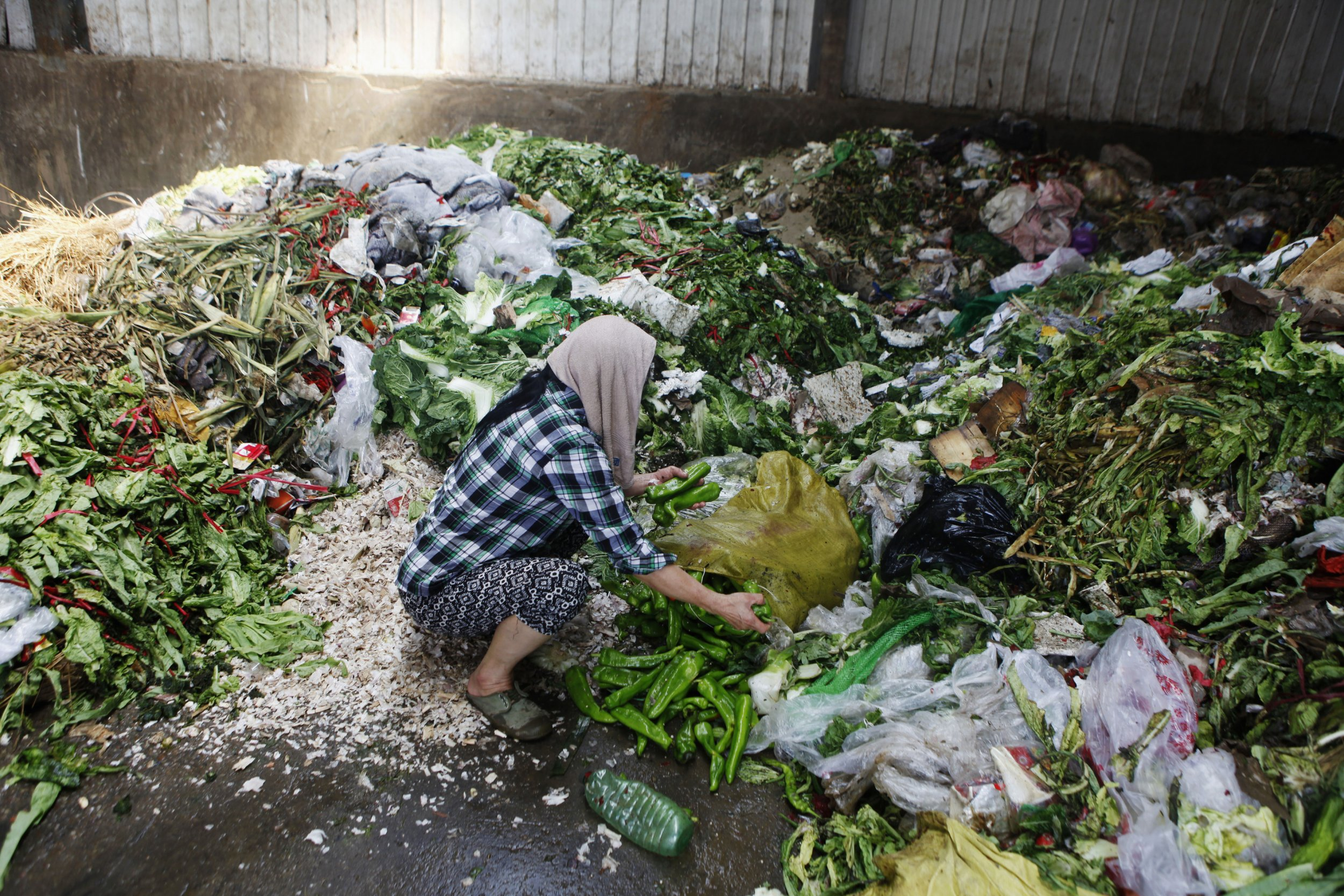 Food waste adding to climate change