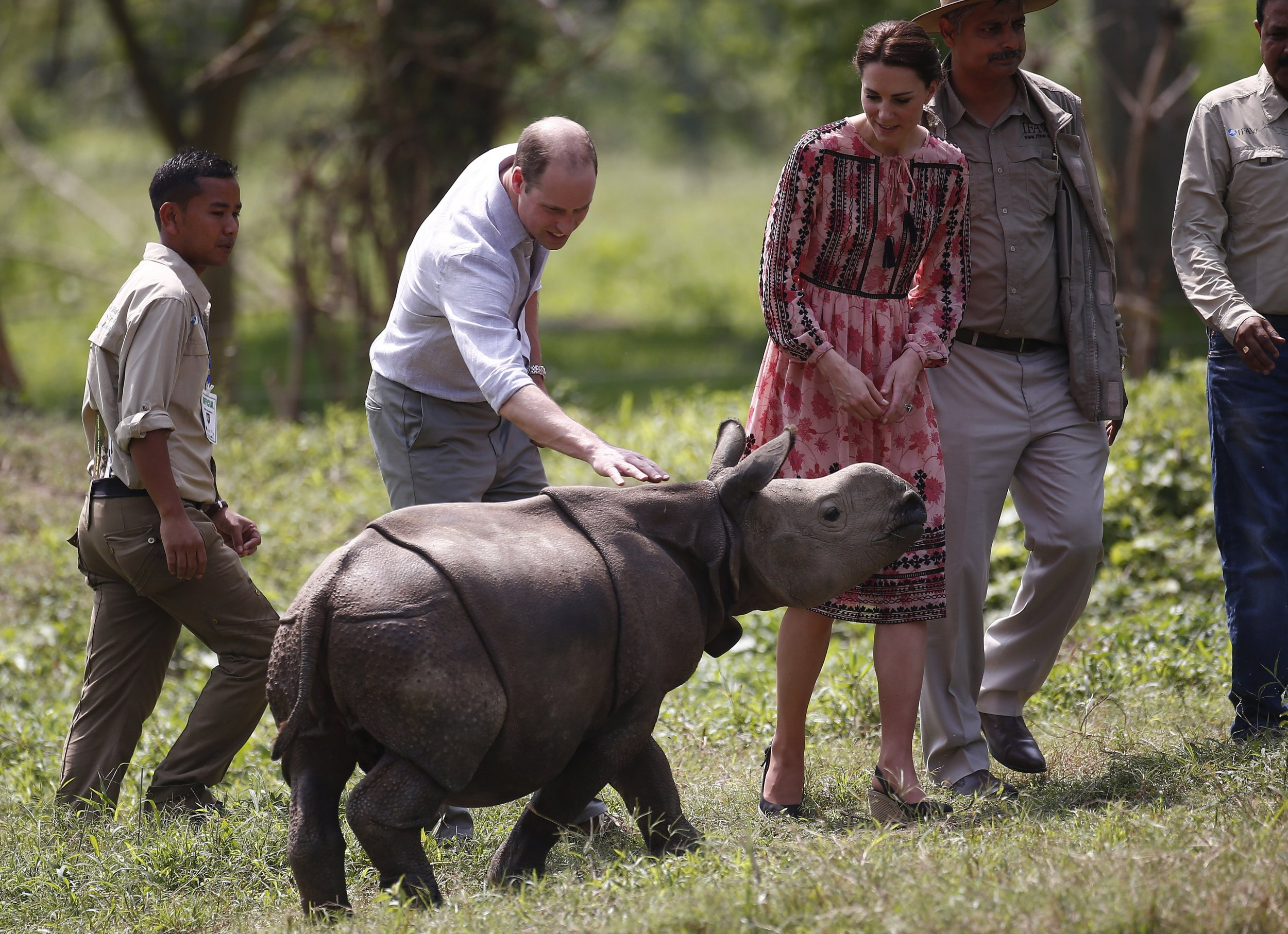 Duke and Duchess of Cambridge meet a rhino in India.